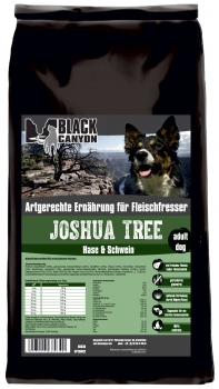 BLACK CANYON Joshua Tree (Hase & Schwein)